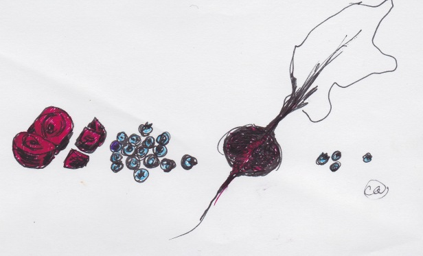 Beets and blueberries drawing